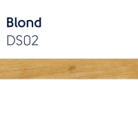 ds02 blond  5mm x 2mm