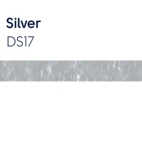 ds17 silver 5mm x 2.5mm